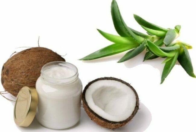 aloe-i-kokosovoe-maslo-dlya-volos.jpg